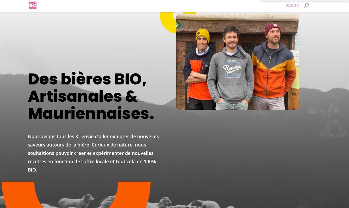 developpeur site internet maurienne